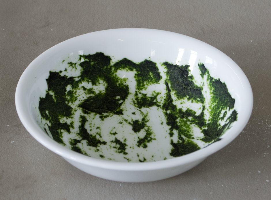 Baked-on spinach is one of the toughest stains we challenge each dishwasher to clean.