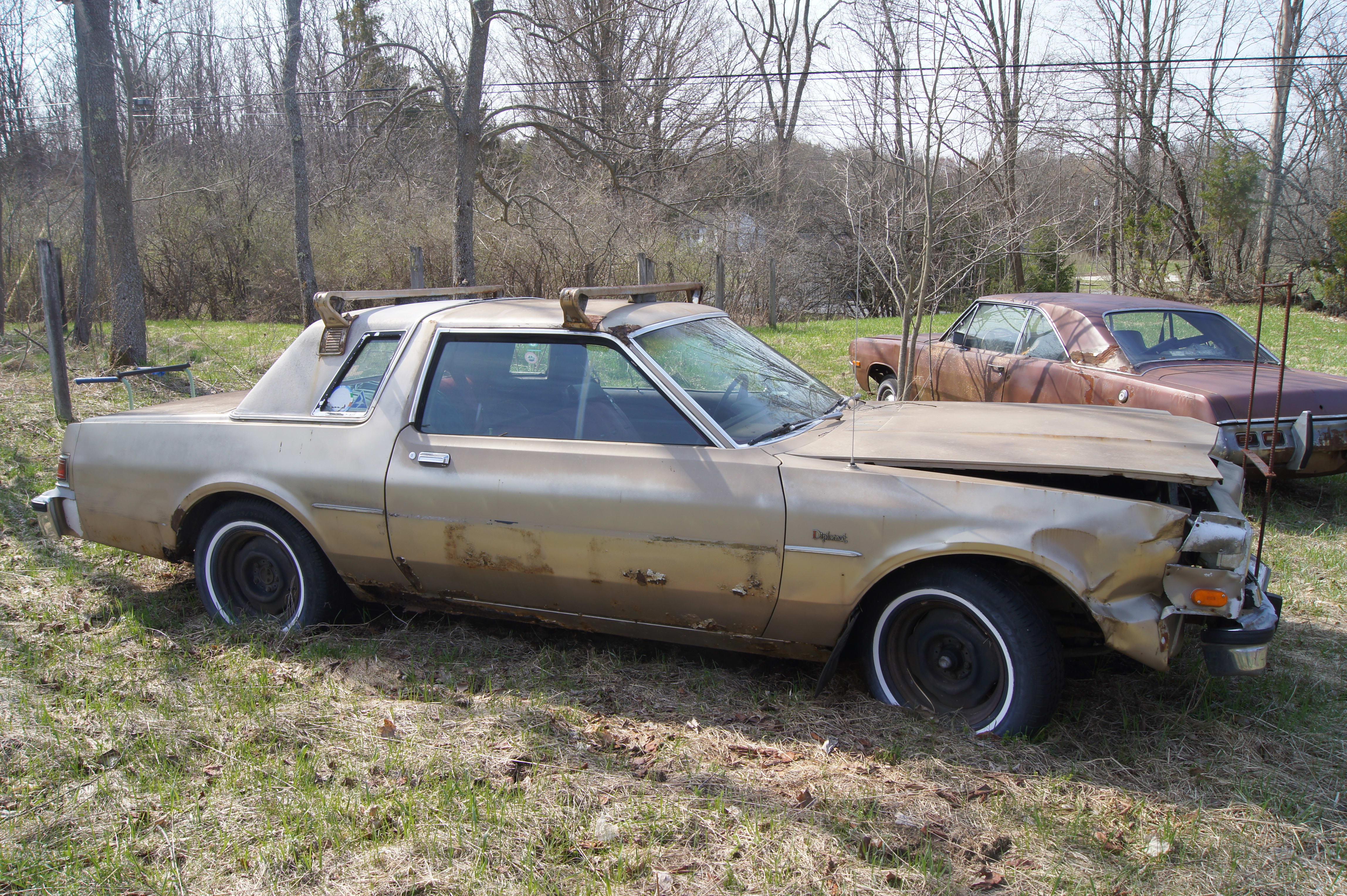 Dodge Diplomat Sample
