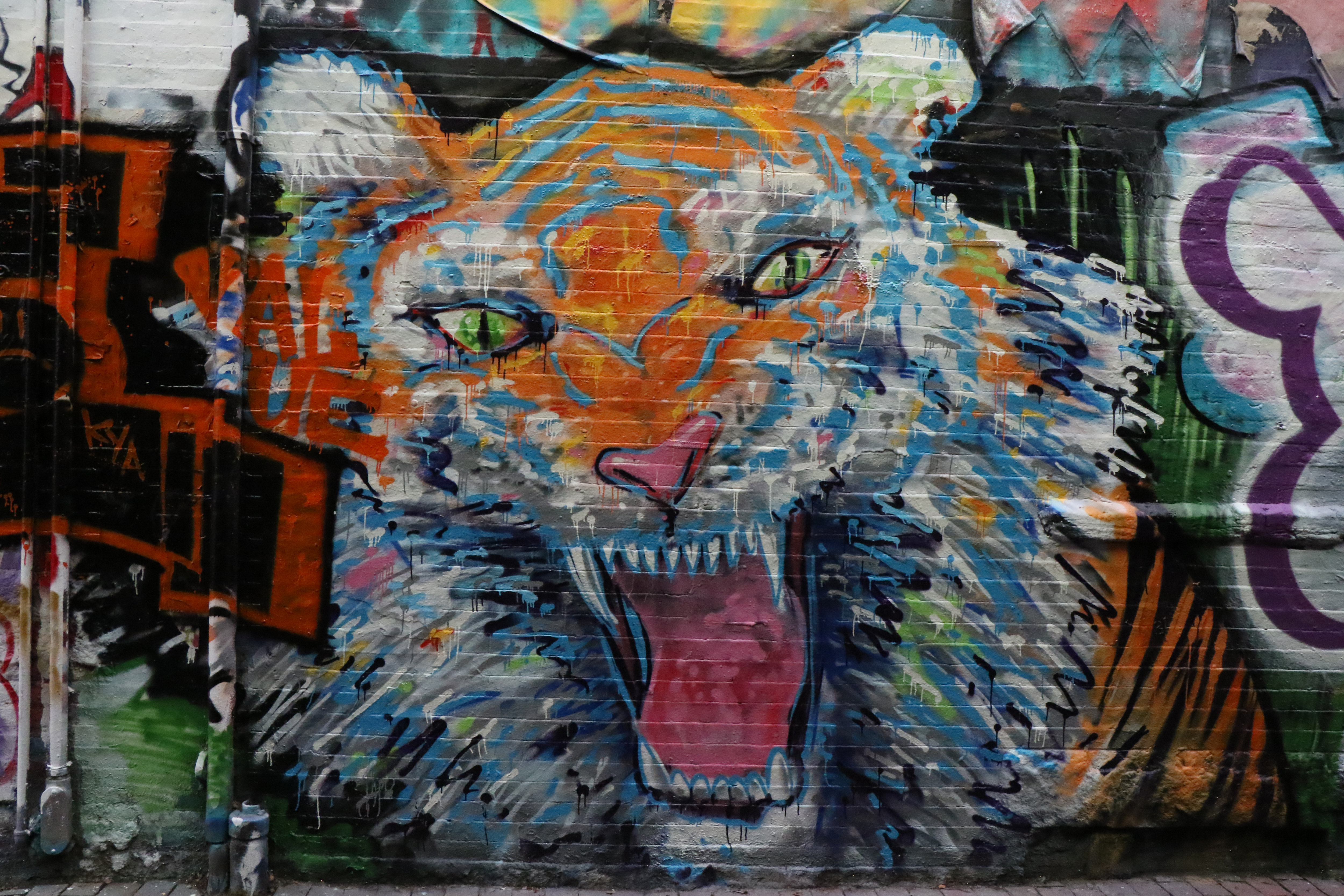 A sample photo of graffiti taken by the Canon EOS 7D Mark II.