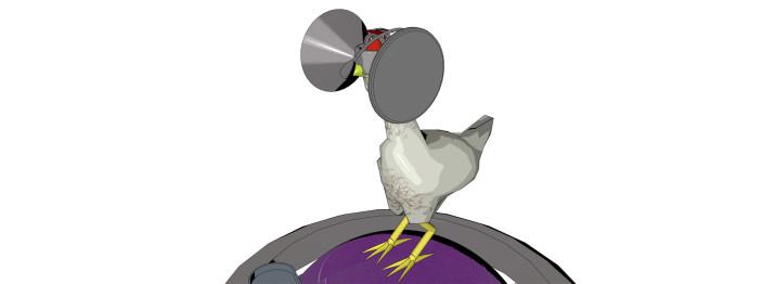 https://reviewed-production.s3.amazonaws.com/attachment/5d279a7f479e4a7f/chicken-matrix-hero.jpg