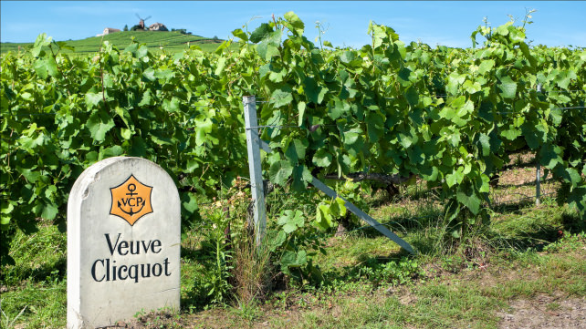 Veuve Clicquot vineyards