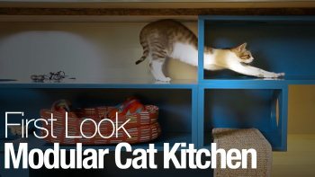 1242911077001 4847374251001 modular cat kitchen