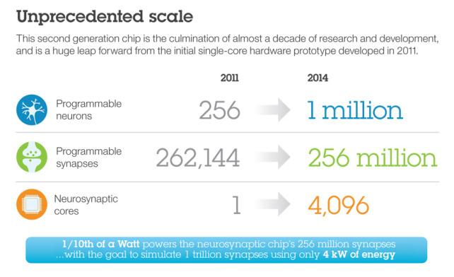 Synaptic Scale.jpg