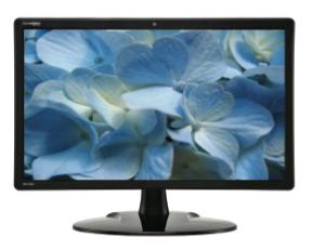 Product Image - DoubleSight DS-220C