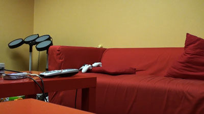 Sony_HDR-TG1_Office_Couch.jpg
