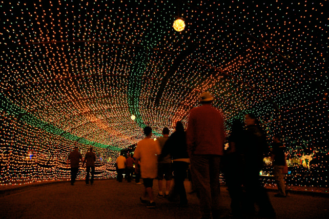 Trail of Lights-flickr austins_only_paper.jpg