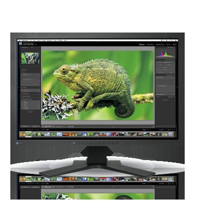 Product Image - Eizo  ColorEdge CG241W