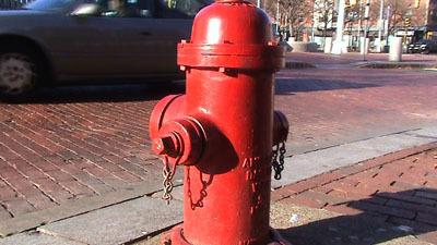 Sony_DCR-DVD810_hydrant.tiff_web.jpg