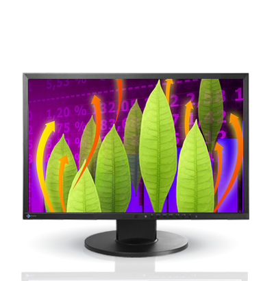 Product Image - Eizo FlexScan EV2216W