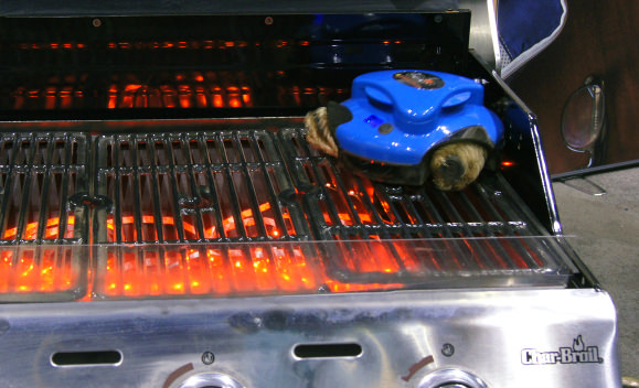 Grillbot-In Action